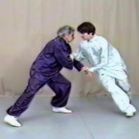 Sam Masich Push Hands DVD with Taiji Da Lu